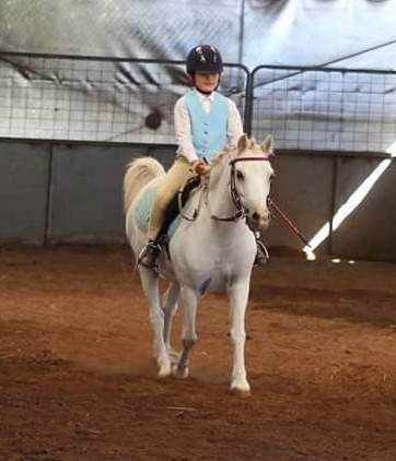 Horse Riding Lessons and Instruction Perth