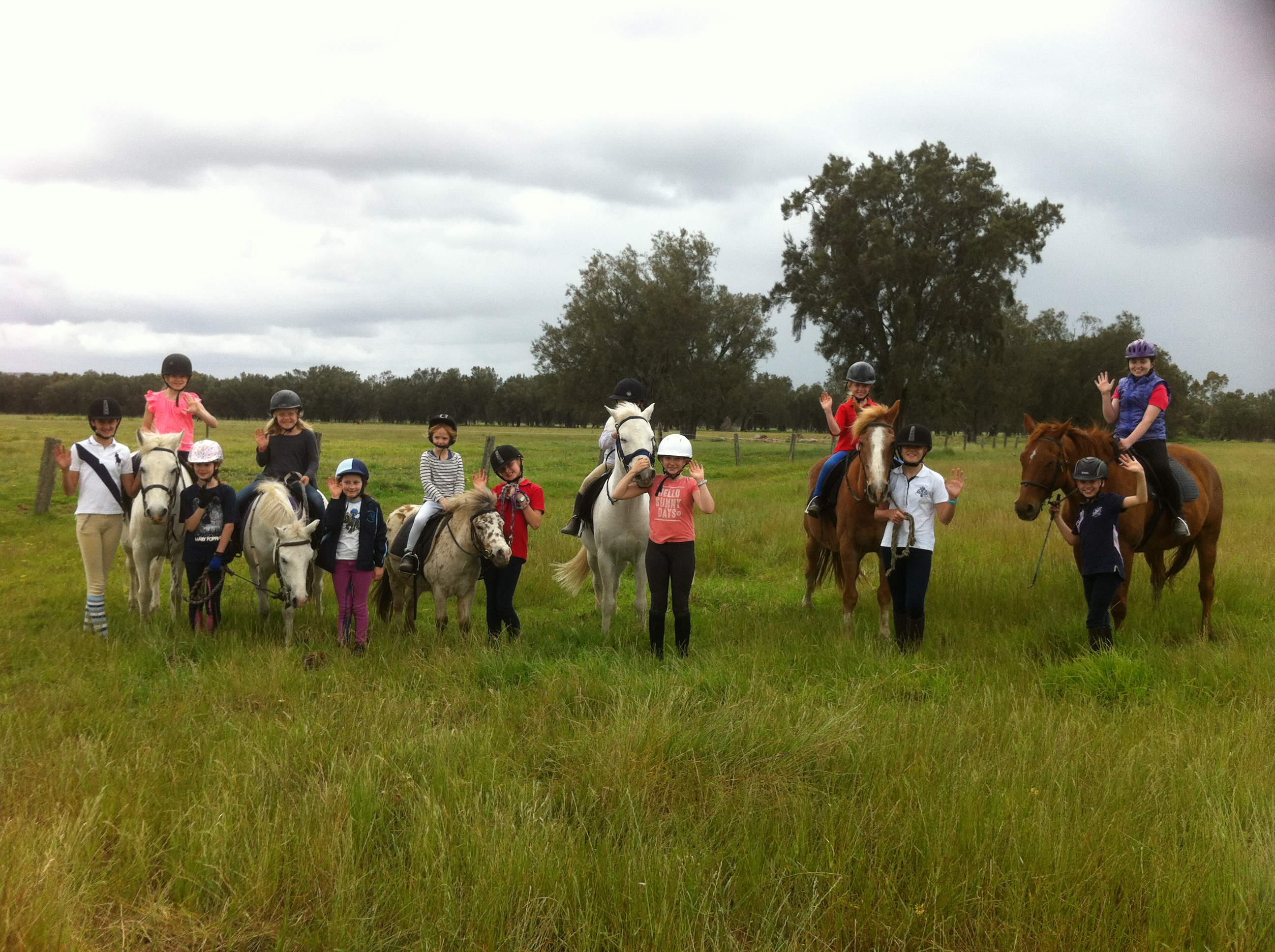 Trail Ride At Bold Park Showgrounds Equestrian Centre